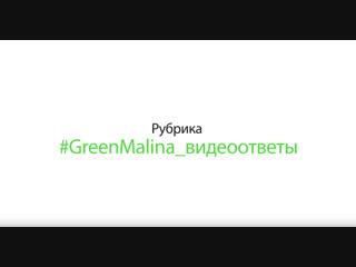Ответ № 1. Видеоответы от Green Malina