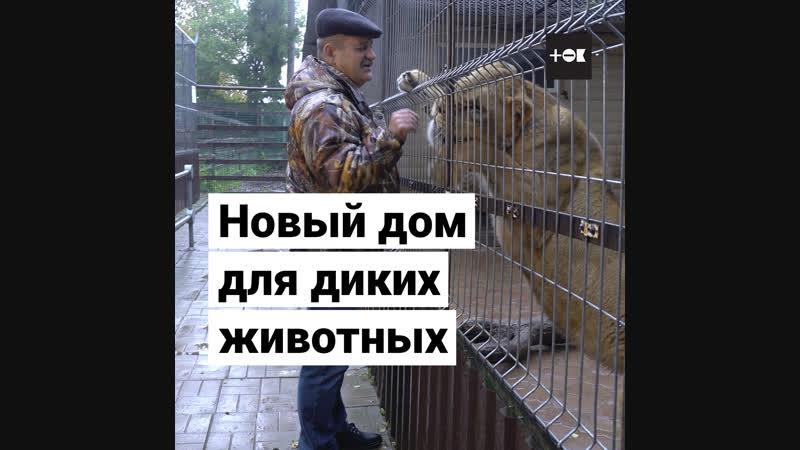 Питомник для диких зверей