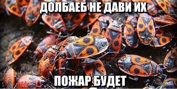 Ностальгия Лихие 90-е | ВКонтакте