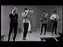 John Fred and His Playboy Band Judy in Disguise HQ Audio