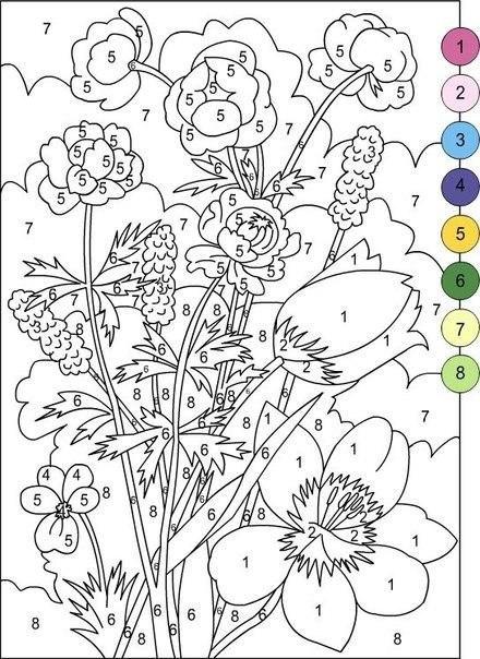 Раскраски по номерам (10 фото)