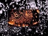Лугаснк Массовый запуск небесных фонариков
