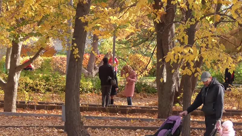 Осень это когда можно купаться в листьях