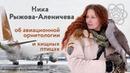 Ника Рыжова Аленичева об авиационной орнитологии