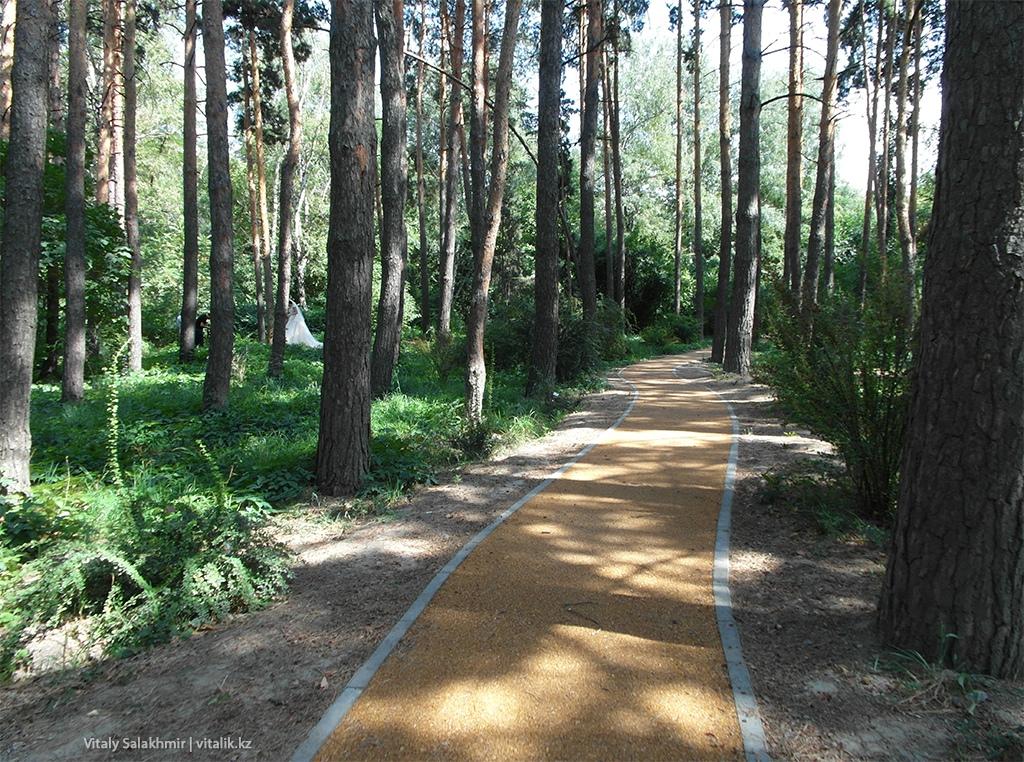 Тропа внутри Ботанического сада Алматы 2018