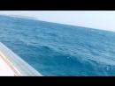 Дорога на остров пиратов