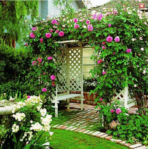 вертикальное озеленение лианами одним из самых простых и, вместе с тем, самых популярных приемов озеленения, применяемых для благоустройства балконов, является вертикальное озеленение. зеленые