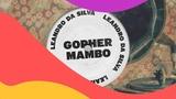 Leandro Da Silva - Gopher Mambo (Audio)