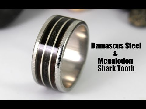 Damascus Steel Ring With Megalodon Shark Tooth Wood Inlay (How To)