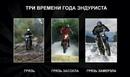 Миша Дмитриев фото #2