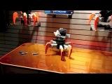 Шагающий и стреляющий робот NERF combat creatures