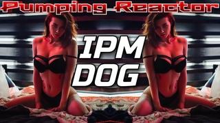 IPM - DOG (Original Mix)