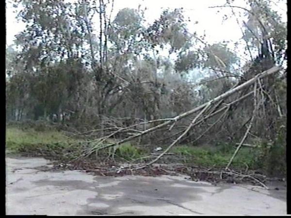 Ураган в г Усолье-Сибирское Отголоски урагана Прошло 15 дней 16 июля 2004г