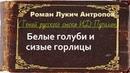 Роман Антропов. Белые голуби и сизые горлицы. аудиокнига
