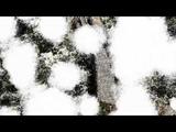 Александр Кутиков - Снег (Official Video)