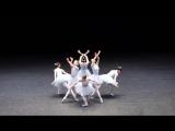 Самый смешной балет, из тех что я видел