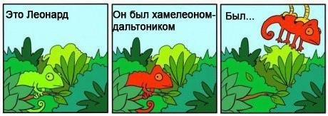 http://cs309717.userapi.com/v309717359/3c01/QHIB_fz9nc8.jpg
