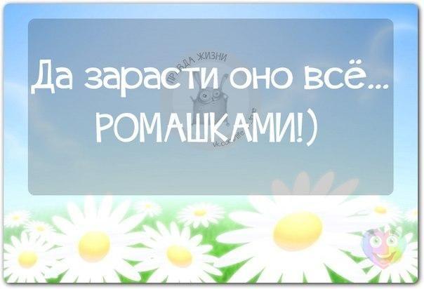 Доброе утро,день,вечер:)))))))) - Страница 6 KWC4YpZ4AGM