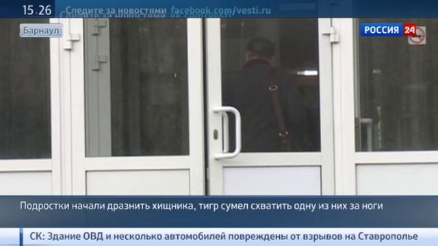 Новости на Россия 24 • Тигриный гон или алкоголь Следователи выясняют, почему Лотос напал на школьницу в Барнауле