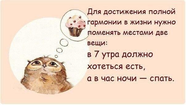 http://cs617418.vk.me/v617418201/1de54/byVQxOSFIE0.jpg