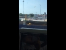 Швартовка парома в порту Виртсу