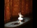 Curtain Call 3 13.06.2018 Svetlana Zakharova and Denis Rodkin svetlanazakharova as Nikiya denisrodkin as solor La Baya