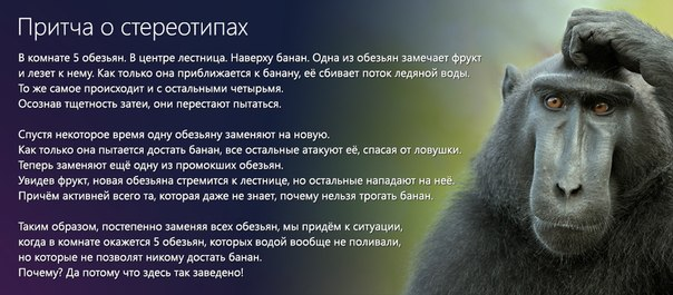 http://cs313121.vk.me/v313121025/7913/5Bz9x3i8ZZI.jpg