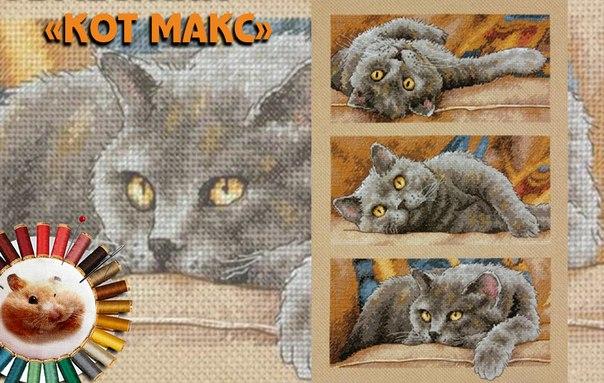 Вышивка крестиком кот макс 33