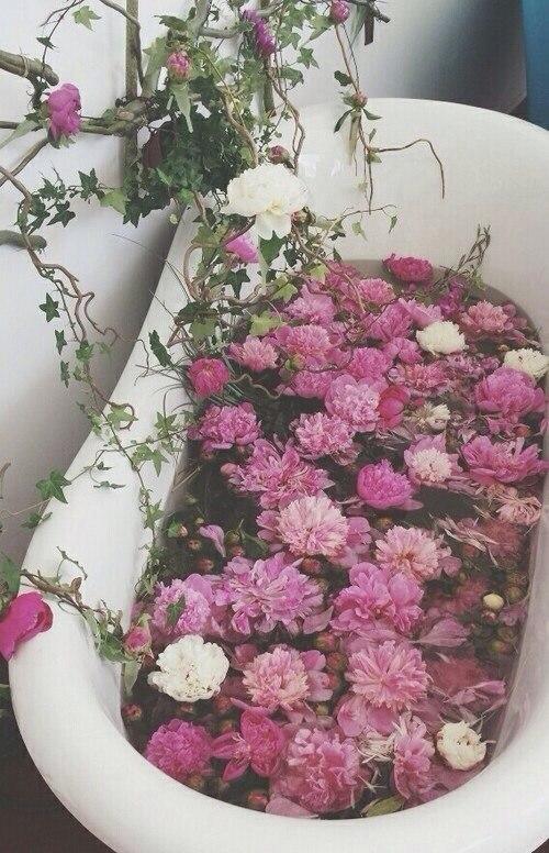 Фото тумблер цветов