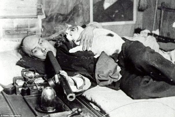 Опиумные притоны Возникли они в середине XIX века в США и к концу века стали очень популярными. В этих притонах клиентам предоставляли койки или ковры, на которых можно было расслабиться и