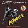 Karate Tula