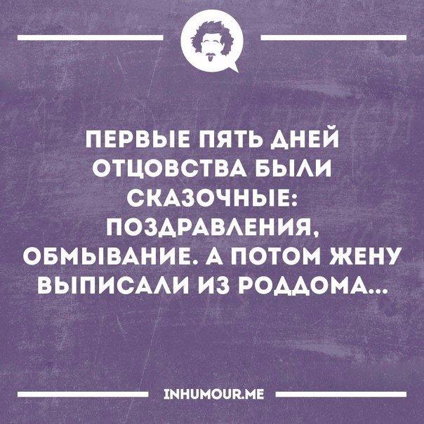 https://pp.vk.me/c543109/v543109554/40c46/dweiOb8fd8o.jpg