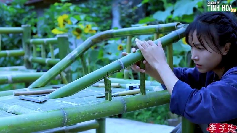 Cô gái tự lên rừng chặt tre xây nhà, làm bàn ghế | Vớ vẩn