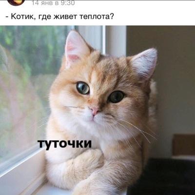 Марина Шаврина