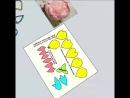 каттер пион цветы флористика торты