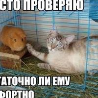 Анна Романова, 24 июня , Харьков, id217812483