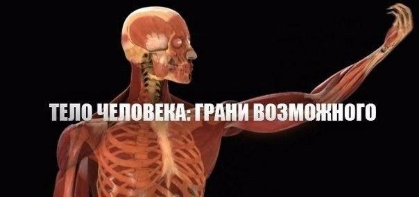 Тело человека. Грани возможного