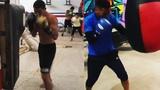 Miguel 'Alacran' Berchelt vs Miguel 'Mikey' Roman Side x Side training comparison
