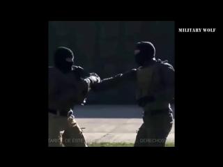 Силы Специальных Операций РФ. Вежливые люди.
