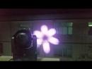 GY-X8 6x40w bee eye  8-10m effect