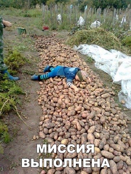 Фото №456249240 со страницы Ксении Глуховченко