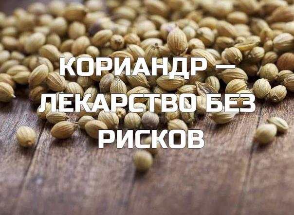 КОРИАHДР — ЛЕКАРСТВО БЕЗ РИСКОВ