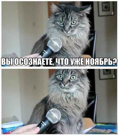 Даниил Черепов, 26 мая 1999, Йошкар-Ола, id111695401