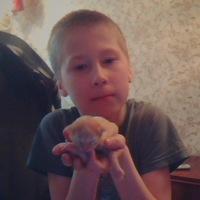 Артём Никкар