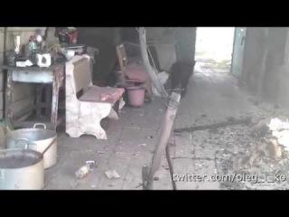 Животные в Никишино 14. Боевой пес Черный. Спасен и устроен на службу  в роту Байкера