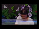 Axwell Live @ Tomorrowland 2013 (HD VIDEO)