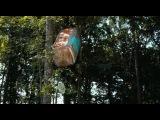 Месть пушистых. Трейлер. Русская озвучка. (2010). HD http://vk.com/gbgames