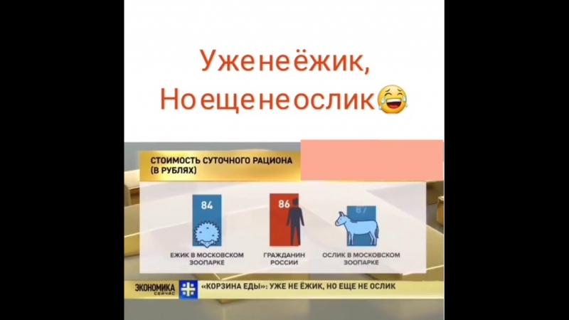ослик или ёжик?))