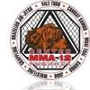 Center MMA-12 Rybinsk