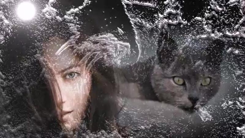Стас Михайлов и Тина Кароль - Моя душа.💞💋♥️🌹